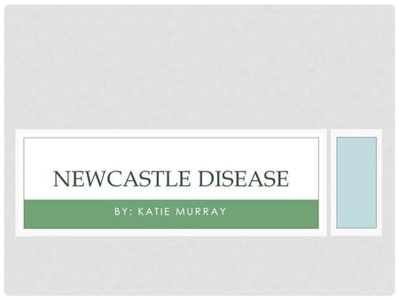 BY: KATIE MURRAY NEWCASTLE DISEASE. CAUSES/ORIGIN Newcastle disease, also known as Avian Distemper or Velogenic Viscerotropic Newcastle Disease is caused.