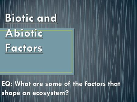 EQ: What are some of the factors that shape an ecosystem?