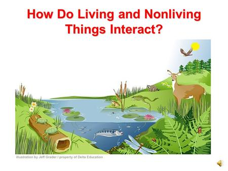 How Do Living and Nonliving Things Interact?