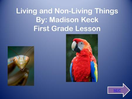 Living and Non-Living Things By: Madison Keck First Grade Lesson NEXT.