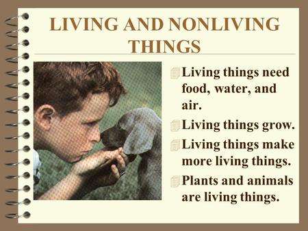 LIVING AND NONLIVING THINGS 4 Living things need food, water, and air. 4 Living things grow. 4 Living things make more living things. 4 Plants and animals.