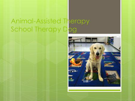 Animal-Assisted Therapy School Therapy Dog. What is Pet Therapy / Animal- Assisted Therapy (AAT)?  Pet therapy is a broad term that includes animal-assisted.