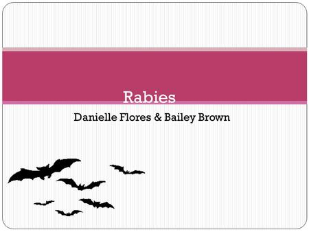 Danielle Flores & Bailey Brown Rabies. What is Rabies? Rabies is a preventable viral disease of warm blooded mammals most often transmitted through the.