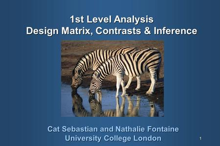 1 1st Level Analysis Design Matrix, Contrasts & Inference Cat Sebastian and Nathalie Fontaine University College London.
