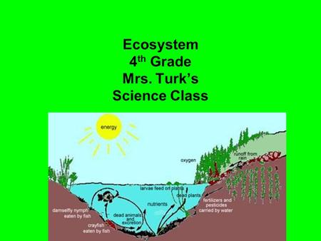 Ecosystem 4 th Grade Mrs. Turk's Science Class. Examples of Ecosystems.