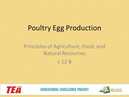 Poultry Egg Production Principles of Agriculture, Food, and Natural Resources c 12 B.