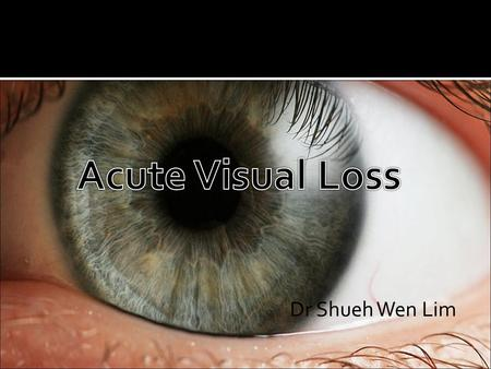  70yo woman presents with sudden onset loss of vision in her right eye half hour ago  No improvement since  No previous ophthalmic history  What are.