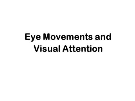 Eye Movements and Visual Attention