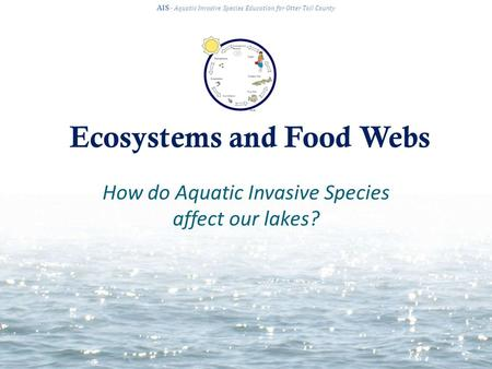 Ecosystems and Food Webs