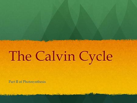 The Calvin Cycle Part II of Photosynthesis. Calvin Named after American biochemist Melvin Calvin Most commonly used pathway by most plants Calvin cycle.