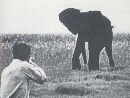 George orwell shooting an elephant essay