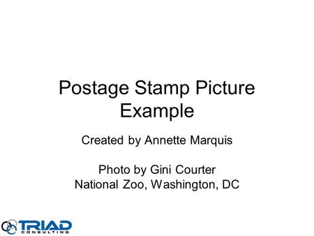 Postage Stamp Picture Example Created by Annette Marquis Photo by Gini Courter National Zoo, Washington, DC.