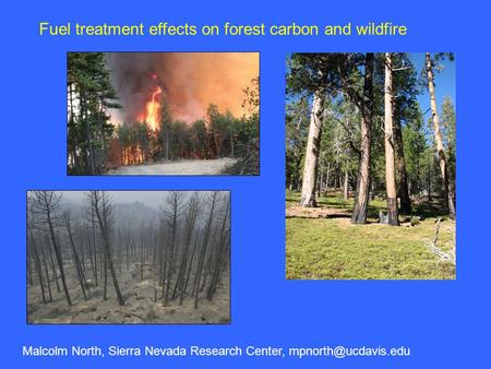 Fuel treatment effects on forest carbon and wildfire Malcolm North, Sierra Nevada Research Center,