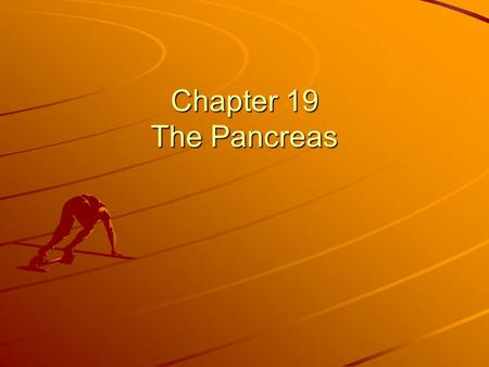 Chapter 19 The Pancreas.