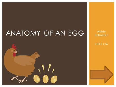 Abbie Schaefer EDCI 270 ANATOMY OF AN EGG.  To advance to the next slide…  To go back to the last slide…  To go to the home page (Anatomy of an egg.