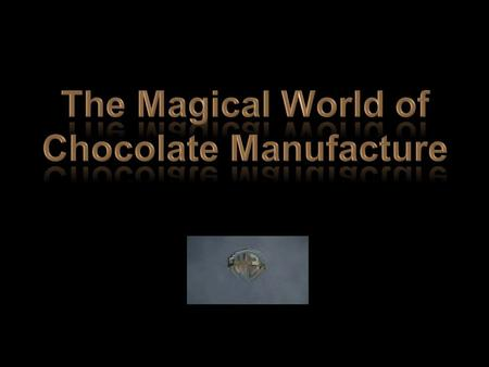 The Magical World of Chocolate Manufacture