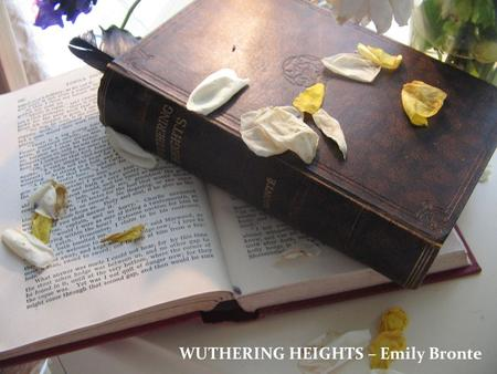 WUTHERING HEIGHTS – Emily Bronte.  British novelist and poet  best remembered for her only novel, Wuthering Heights  Emily was the third eldest of.