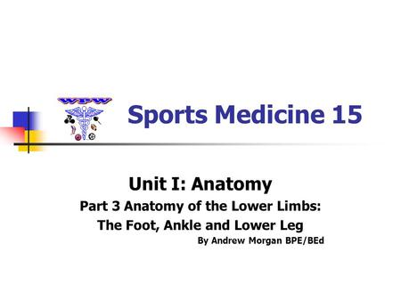 Sports Medicine 15 Unit I: Anatomy Part 3 Anatomy of the Lower Limbs: The Foot, Ankle and Lower Leg By Andrew Morgan BPE/BEd.