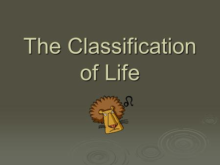 The Classification of Life. Classification of Life Biology » The study of life Taxonomy » Classification and naming of organisms.
