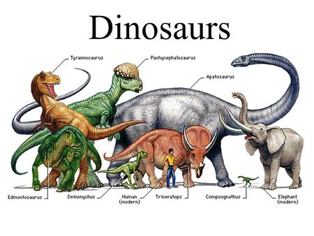 "Dinosaurs. What are they? Dinosaur means in Greek means ""terrible lizard"", They lived 230 million years ago."