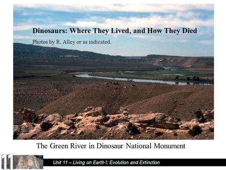 Unit 11 – Living on Earth I: Evolution and Extinction Dinosaurs: Where They Lived, and How They Died Photos by R. Alley or as indicated. The Green River.