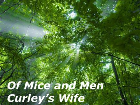 Free Powerpoint Templates Page 1 Free Powerpoint Templates Of Mice and Men Curley's Wife.