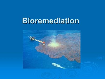 Bioremediation.