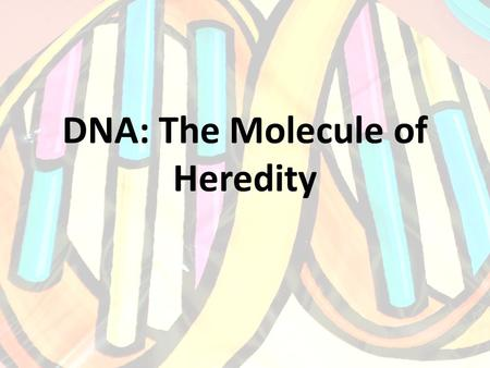 DNA: The Molecule of Heredity. DNA Structure Deoxyribonucleic acid. A macromolecule composed of two strands of monomers called nucleotides. These strands.