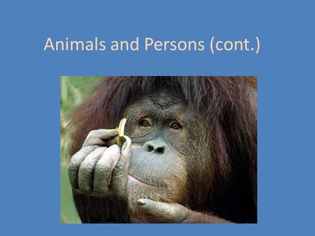 Animals and Persons (cont.). Tom Regan Contemporary American Philosopher Deontologist, in the tradition of Kant Specialist in animal rights The Case for.