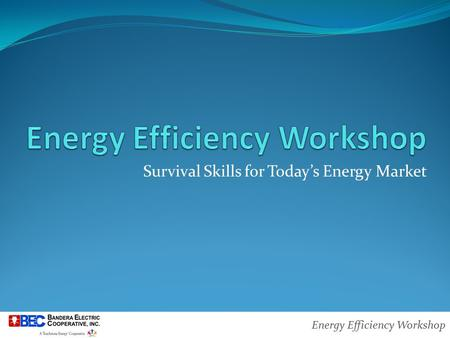 Energy Efficiency Workshop Survival Skills for Today's Energy Market.
