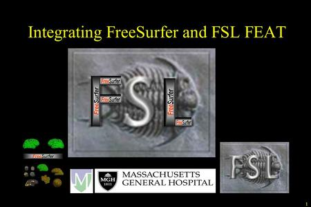 Integrating FreeSurfer and FSL FEAT