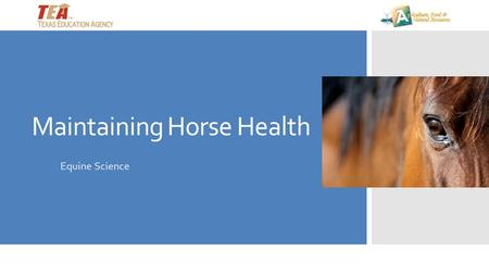 Maintaining Horse Health Equine Science. How do you know when you are sick? First you must recognize what is normal for you— then you can identify abnormal.
