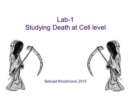 Lab-1 Studying Death at Cell level Behzad Khoshnood, 2015.