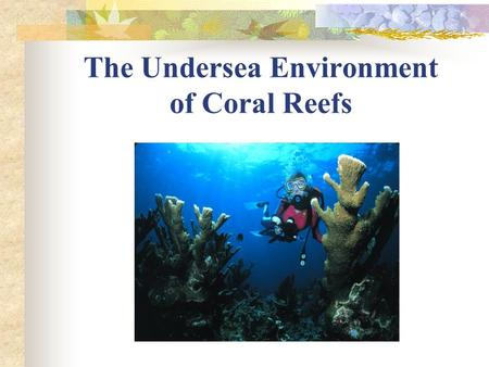 The Undersea Environment of Coral Reefs. Presentation Overview Biological characteristics of reefs Functions of reefs Potential Diseases and Hazards.