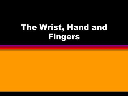 The Wrist, Hand and Fingers. BONES l FOREARM Radius – lateral and thumb side Ulna – medial and pinky side.