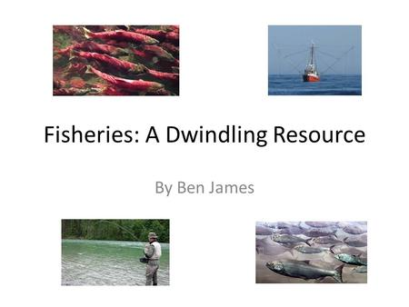 Fisheries: A Dwindling Resource By Ben James. How has the fish resource in British Columbia been effected over time?