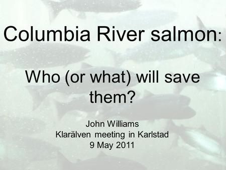 Columbia River salmon : Who (or what) will save them? John Williams Klarälven meeting in Karlstad 9 May 2011.