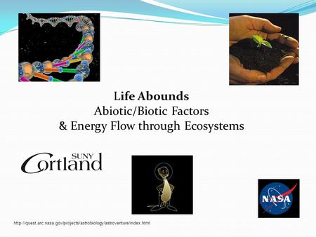 Life Abounds Abiotic/Biotic Factors & Energy Flow through Ecosystems