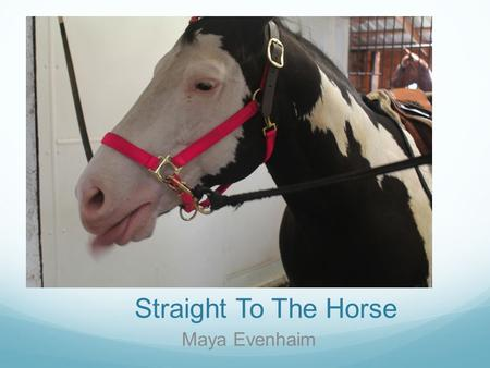 Straight To The Horse Maya Evenhaim. People use horses for many different reasons. For example, horses are used in the Military to travel. Cops in New.