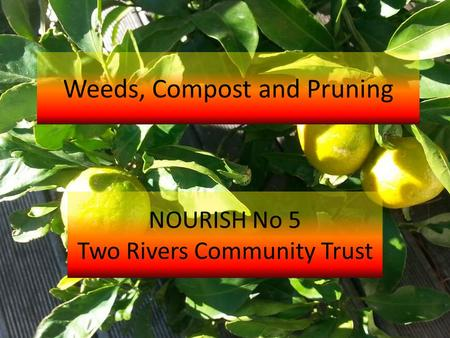 Weeds, Compost and Pruning NOURISH No 5 Two Rivers Community Trust.