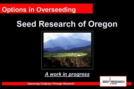 Improving Turfgrass Through Research Seed Research of Oregon Options in Overseeding A work in progress.