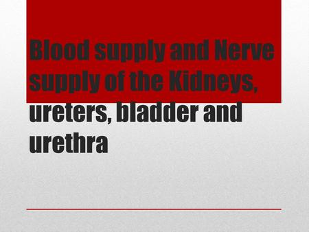 Blood supply and Nerve supply of the Kidneys, ureters, bladder and urethra.