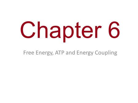 Free Energy, ATP and Energy Coupling