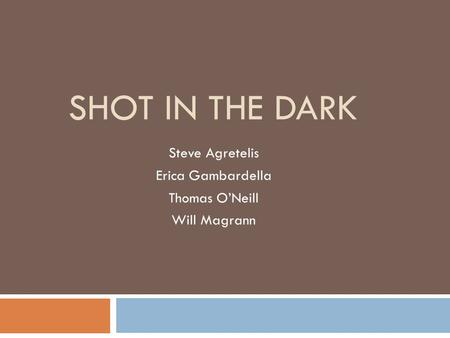 SHOT IN THE DARK Steve Agretelis Erica Gambardella Thomas O'Neill Will Magrann.