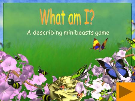 A describing minibeasts game