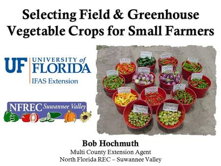 Selecting Field & Greenhouse Vegetable Crops for Small Farmers Bob Hochmuth Multi County Extension Agent North Florida REC – Suwannee Valley.
