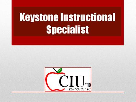 Keystone Instructional Specialist. Keystone Exams Offered three times each year – winter, spring and summer. Offered in Algebra I, Biology and Literature.