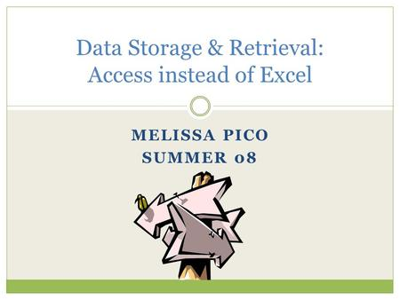 MELISSA PICO SUMMER 08 Data Storage & Retrieval: Access instead of Excel.