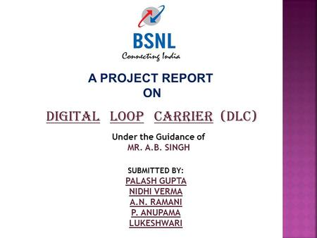 A PROJECT REPORT ON DIGITAL LOOP CARRIER (DLC) Under the Guidance of MR. A.B. SINGH SUBMITTED BY: PALASH GUPTA NIDHI VERMA A.N. RAMANI P. ANUPAMA LUKESHWARI.
