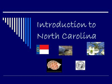 Introduction to North Carolina. What are the four major regions of NC?  Tidewater  Coastal Plain  Piedmont  Mountains.